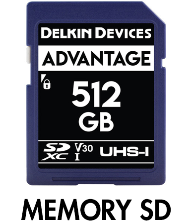 Picture for category SD Memory Cards